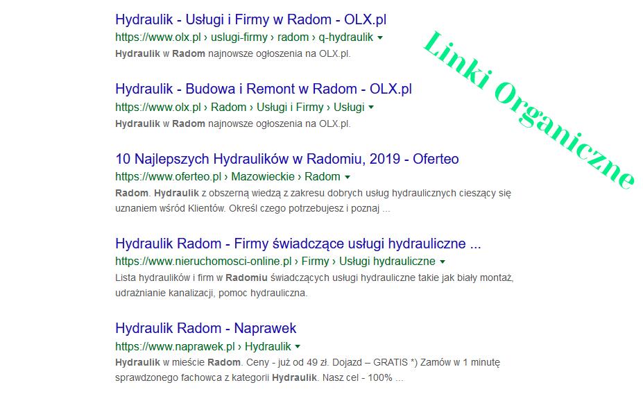 Wyniki wyszukiwania linki organiczne